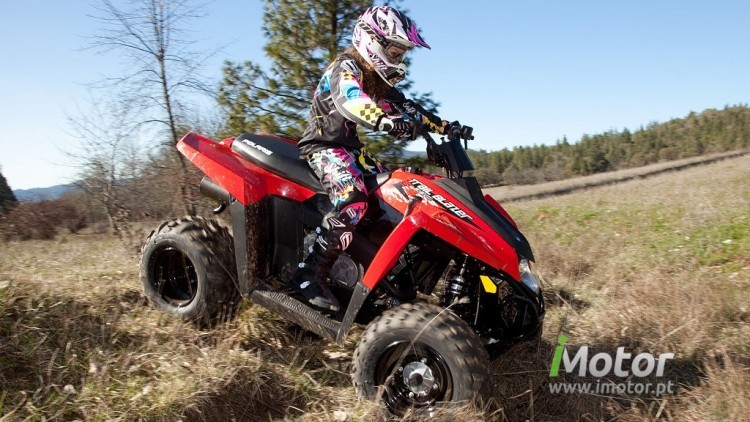 Polaris Trail Blazer 330